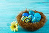 ������, ������: Blue Easter Eggs In A Nest