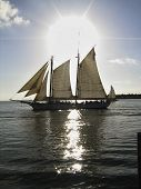 pic of tall ship  - a tall sailing ship sails past key west florida - JPG