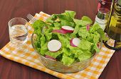Mixed Salad With Lettuce And Radish