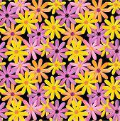 Seamless gerbera flowers pattern, background