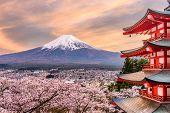 Fujiyoshida, Japan at Chureito Pagoda and Mt. Fuji in the spring with cherry blossoms. poster