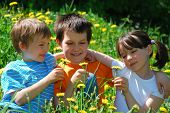 Children In Flower Meadow