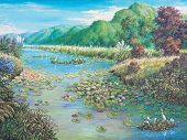 Landscape Of Lotus Swamp