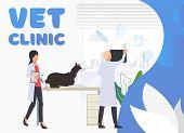 Veterinarians Examining Dog In Vet Hospital. Pet Treatment, Consultation, Animal Care Concept. Poste poster