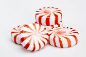 stock photo of peppermint  - Red striped peppermints on a white background - JPG