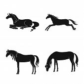 Isolated Object Of Fauna And Mare Symbol. Collection Of Fauna And Stallion Vector Icon For Stock. poster