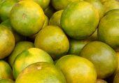 Orange Fruit - Large Amounts Of Orange Fruit, Fresh Orange Fruit, Orange Fruit In A Basket poster