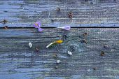Blue Old Shabby Wooden Surface. Background Of Boards. Wood Texture. poster