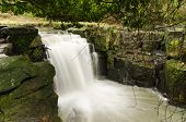 Jesmond Dene Waterfall