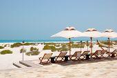 Sunbeds And Umbrellas At The Beach Of Luxury Hotel, Abu Dhabi, Uae