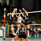 Volley Volleyball all star Game 2008