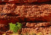 Red Rock Layers