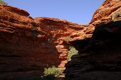 Canyon Shadow And Light