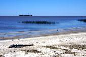 Playa y Uruguay madera