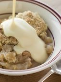 Bowl Of Apple Crumble With Custard