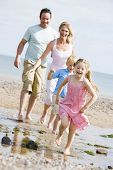 picture of family fun  - Woman and daughter catching sea life in net on beach - JPG