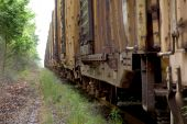 stock photo of boxcar  - A long line of boxcars on a train track - JPG