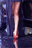 High Heeled Shoes Of Car Model