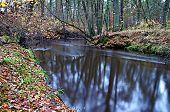 River in autumn.