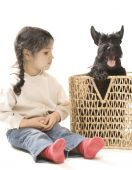image of shiting  - Little girl and scottish terrier in a basket - JPG