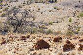 Desert Landscape. Flinders Ranges. South Australia