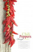 stock photo of red hot chilli peppers  - Red hot chili peppers hanging on wood - JPG