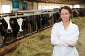 Cute young woman in white robe stands near stall with cows at large farm.