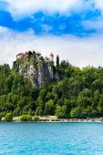 Bled Castle Cliff