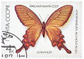 Stamp Printed In The Ussr Shows Butterfly .alcinous, Series