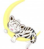 image of white tiger cub  - A cute character of  white tiger cub sleeping on the moon - JPG