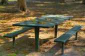 Green Park Picnic Bench