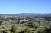 Landscape Of Vineyards In Provence, South France