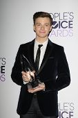 LOS ANGELES - JAN 8: Chris Colfer at The People's Choice Awards at the Nokia Theater L.A. Live on January 8, 2014 in Los Angeles, California
