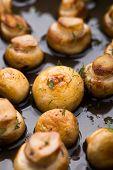 Pan sauteed mushrooms