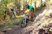 Mountain Bike Competition In Autumn Forest