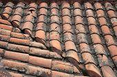 Slate Tiles on a Roof