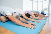 Fitness group bowing in row at the yoga class