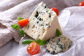 Tasty blue cheese with tomatoes and basil on paper