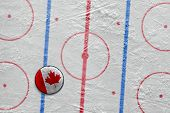 Canadian Hockey Puck On The Site