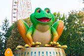 Frog In Park