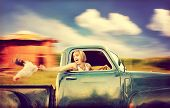 a pretty woman driving a truck past a red barn next to a cornfield with a chicken in her hand
