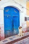 Cuzco, Peru - dog in front of old door