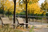 Two wooden benches