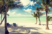 beach, nature, sea, summer and leisure concept - tropical beach with palm trees