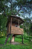 house on tree in summer garden