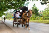 Horse Drawn Carriage In Cuba