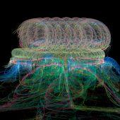 Deep sea Medusa-Colourful illustration