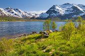 Mountain lake, Lofoten Islands, Norway