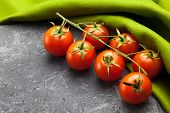 Vine tomatoes on green and black background