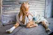 Funny dressed goat on the street in India
